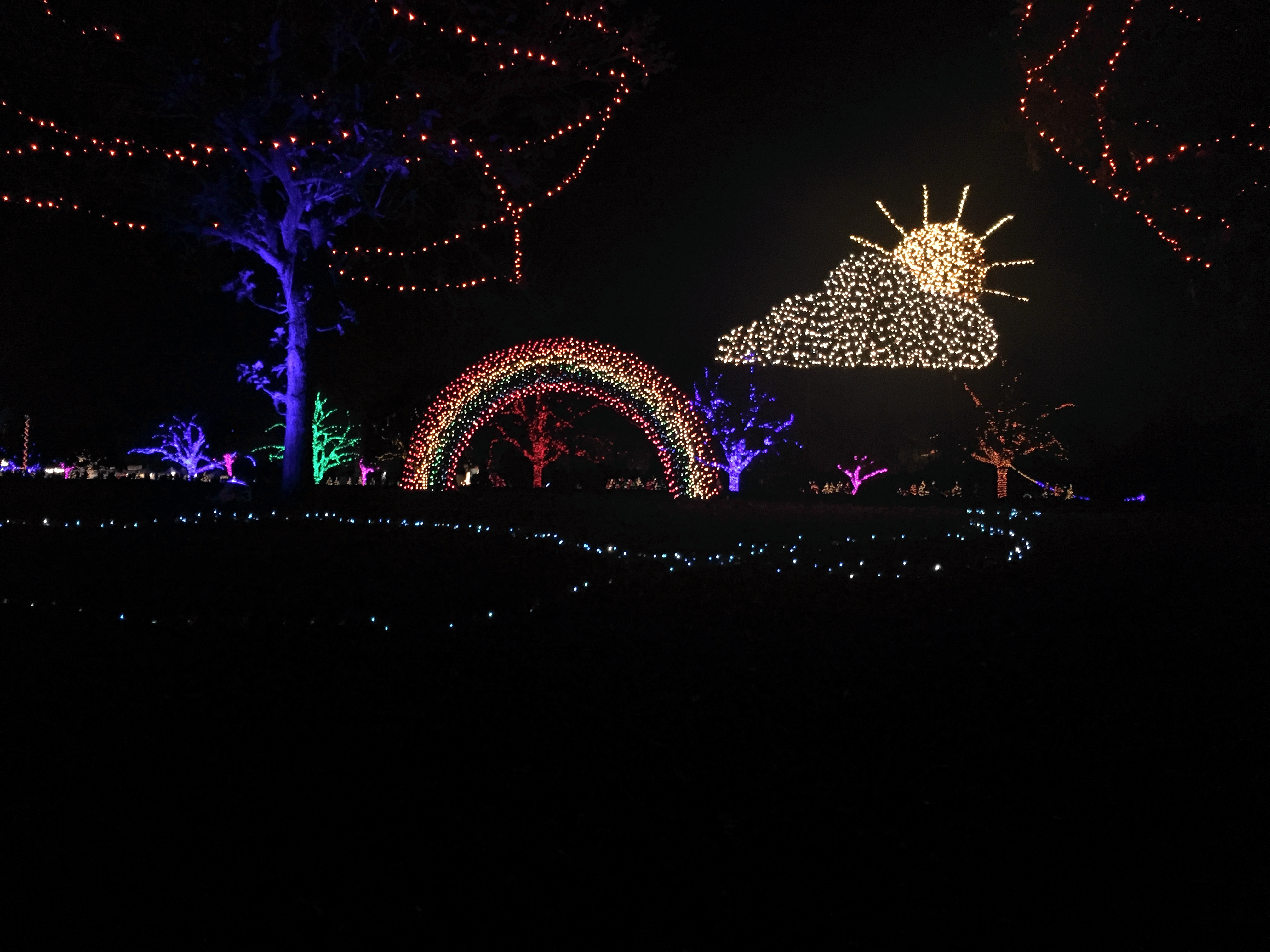 trail-of-lights-08